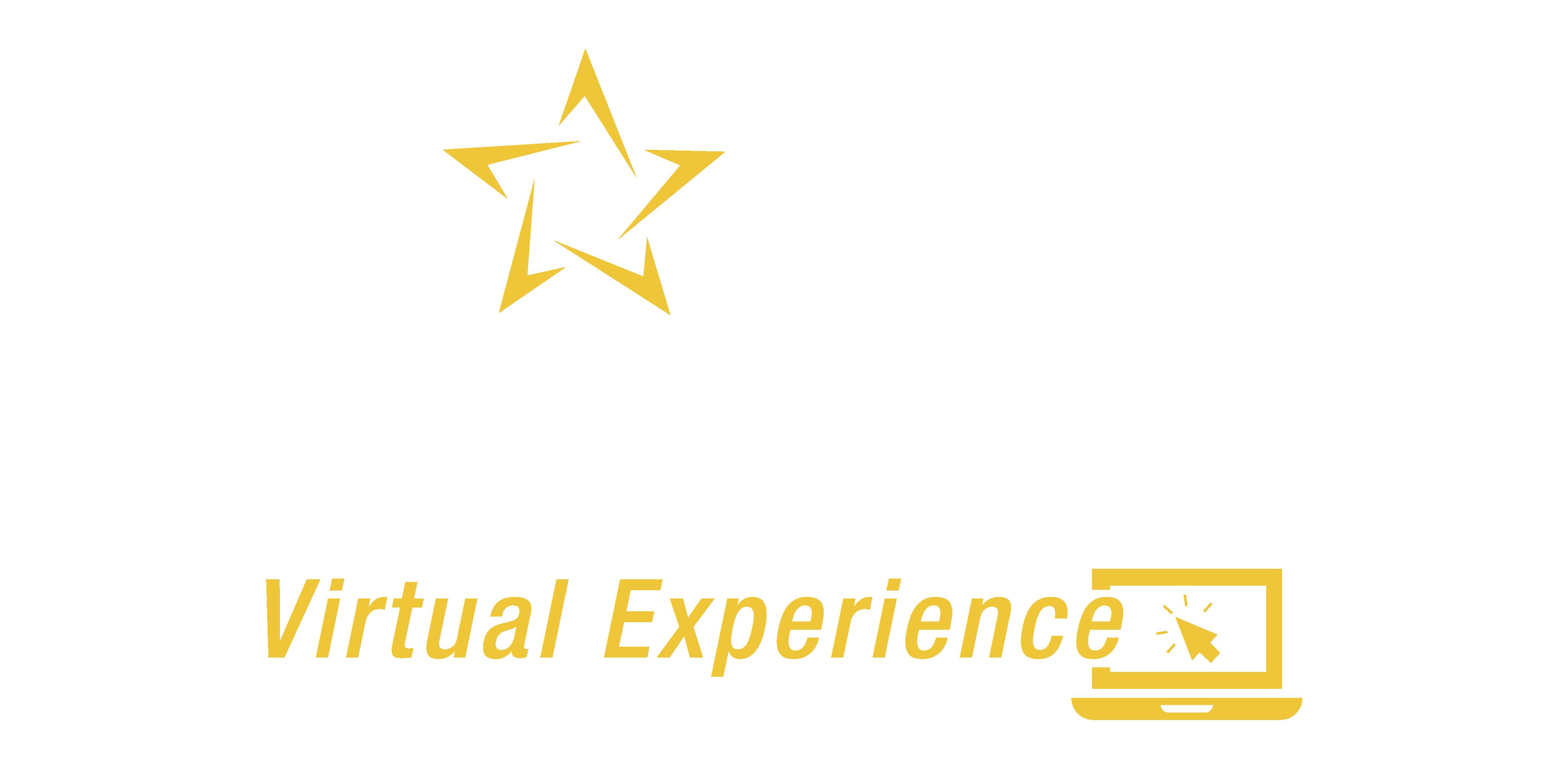 Logo_TOF_Virtua-17